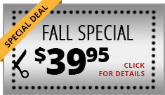 special deal fall special click for details
