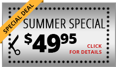 special deal summer special click for details